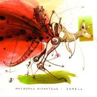 Macropus Giganteus-Sorell