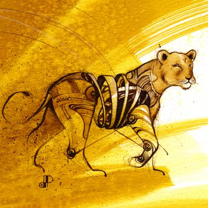 Panthera leo_Gonza