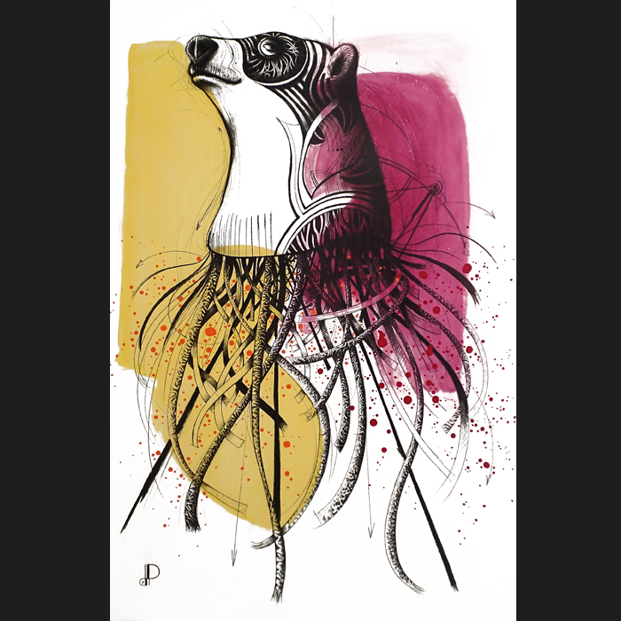 Ursus arctos maritimus-15